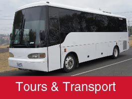Tours & Transportation novato