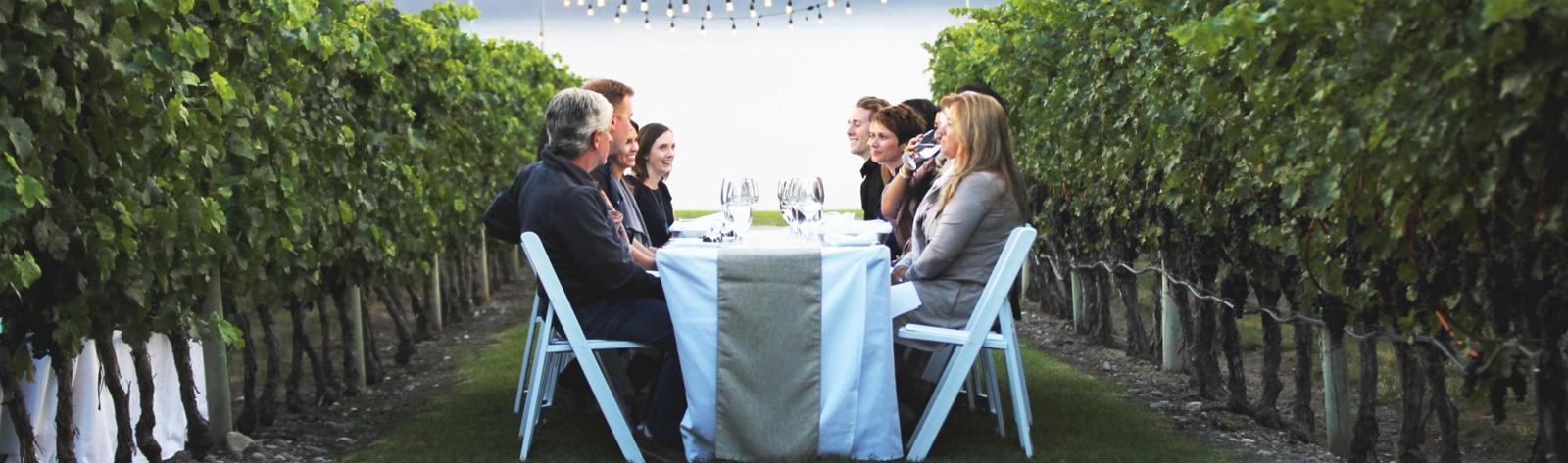 Novato Wine Tours Limo Service